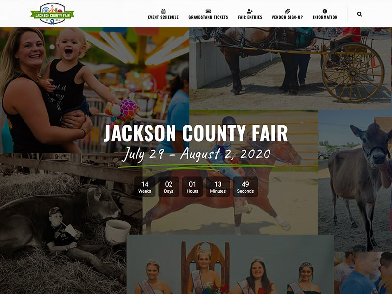 Fair and Festival Website Designs